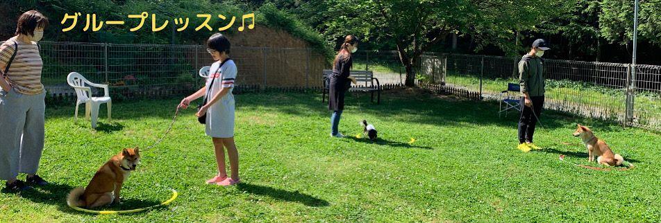 【ドッグスクール井上】犬のしつけ・幼稚園・アジリティー・予約制ドッグラン・ドッグホテル/京都府綾部市